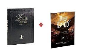COMBO _ BÍBLIA SAGRADA LETRA EXTRAGIGANTE + ANJO CAÍDO