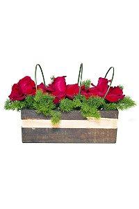 Arranjo de Flores Jardim de rosas vermelhas