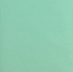 Tricoline Liso Verde Claro Bittencourt ( 0,50 m x 1,40 m )