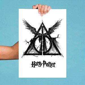 Pôster Harry Potter