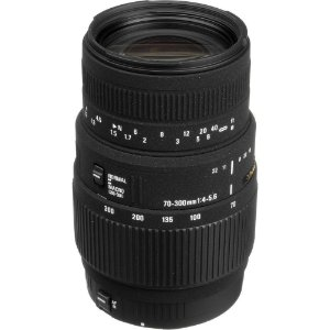 Lente Sigma DG 70-300mm f/4-5.6 Macro para Canon