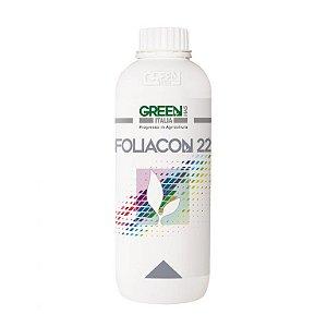 FOLIACON 22