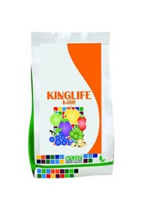 KINGLIFE K400