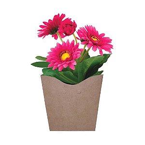 Gérbera Rosa Plantada no Cachepot para Presente