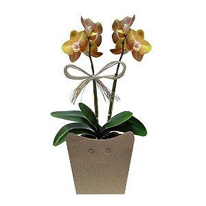 Mini Orquídeas Douradas Plantada no Cachepot para Presente