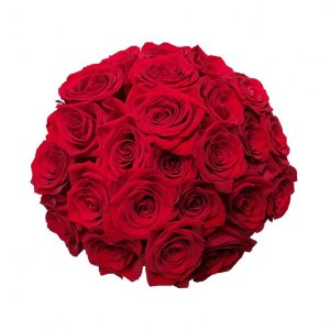 Buquê com 24 Rosas Vermelhas Colombianas