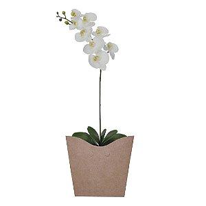 Orquídea phalaenopsis Branca no Cachepot Para Presente