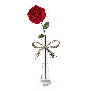 Rosa Vermelha Colombiana Solitária no Vaso de Vidro