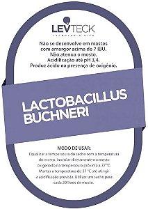 LACTOBACILLUS BUCHNERI