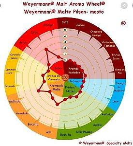 Malte Pilsen Alemão Weyermann 1 Kg