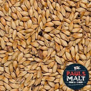 MALTE PAULS MALT AMBER 1 Kg