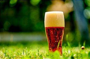 Kit Receita Summer Ale 20 litros