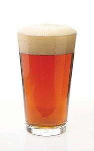 Kit Receita DME Pale Ale 20 litros
