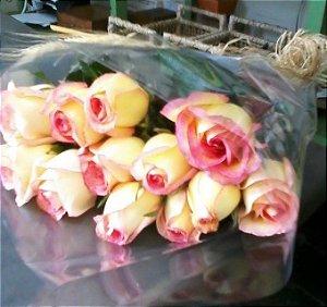 12 Botões de Rosas