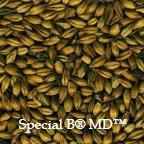 Malte Dingemans Special B 100g