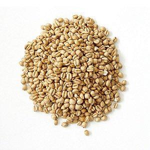 Trigo Não Maltado em Grão 1kg