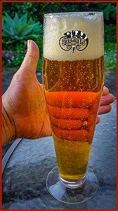Melhorando a clareza e o acabamento da cerveja: em profundidade - parte 2