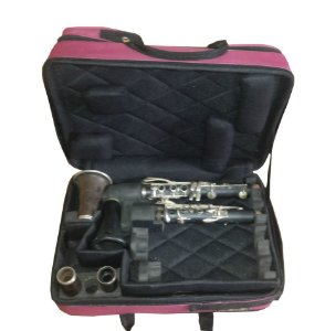Case duplo para 2 clarinete nylon
