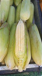 Milho Verde Unidade - Agro Top