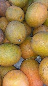 Laranja Baiana Pequena Kilo - Agro Top