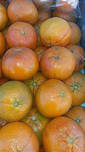 Mexerica Murcote Kilo - Agro Top