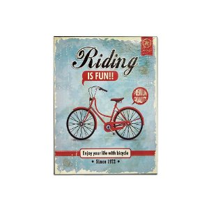 Placa Decorativa de Metal Riding is Fun Azul 30x40