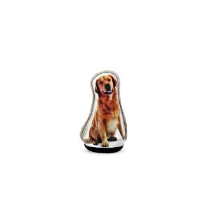Peso de Papel Cachorro Golden Retriever