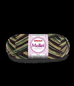 Lã Mollet 40g Cor - 9603 - SALGUEIRO