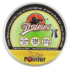 Chumbinho Pointer Training 4.5mm - 250un