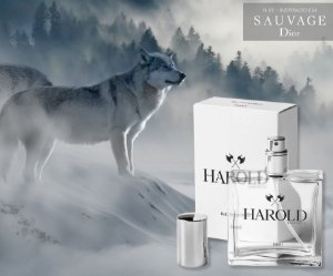 Harold 01 Similar ao Sauvage Dior - 50ML
