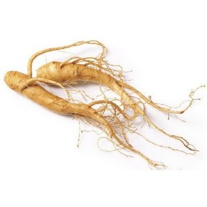 Extrato Ginseng 100ml