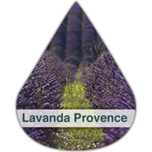 Essência Silver Lavanda Provence DM