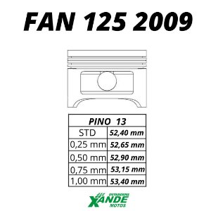 PISTAO KIT FAN 125 2009-14 / NXR BROS 125 2014 VINI 0,25