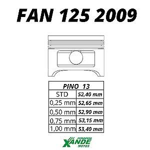 PISTAO KIT FAN 125 2009-14 / NXR BROS 125 2014 KMP/ RIK 0,75