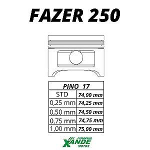 PISTAO KIT FAZER 250 / XTZ 250 LANDER  KMP/ RIK 0,75