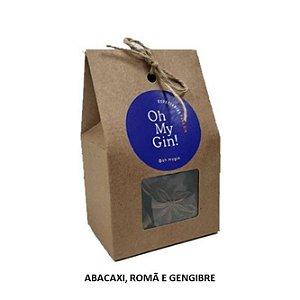 Kit de Especiarias Oh My Gin (Abacaxi, Romã e Gengibre)