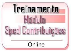 6 - SPED CONTRIBUIÇÕES - Treinamento Online