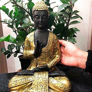 Buda Sidarta Esplendor Divino