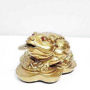 Sapo Kaeru Prosperidade Olho Cristal Swaroviski Feng Shui