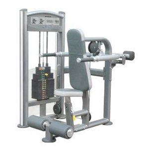 IT Dip Machine - 200 LBS