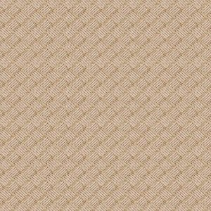 Tecido karsten Acquablock 30 Native Bege Palha - Largura 1,40m - ACB-30
