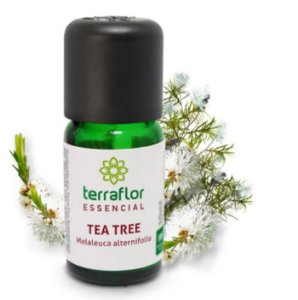 Óleo Essencial de Melaleuca ou Tea Tree - 10ml
