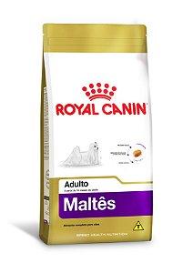 MALTES  ADULTO ROYAL CANIN 1 Kg
