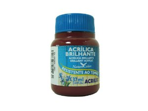 Tinta Acrílica Brilhante 100 ml Marrom - Acrilex