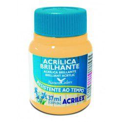 Tinta Acrílica Brilhante 100ml Amarelo Limão - Acrilex