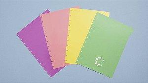 Divisórias Pastel - Grande -Caderno inteligente
