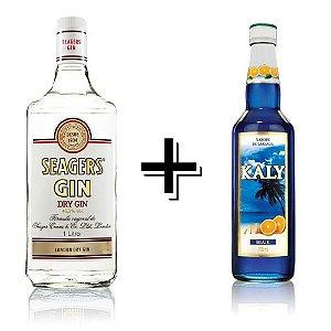 Combo Gin Seagers + Xarope Blue (Laranja)