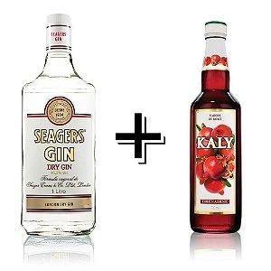 Combo Gin Seagers 1L + Xarope Grenadine (Romã) - 700ml