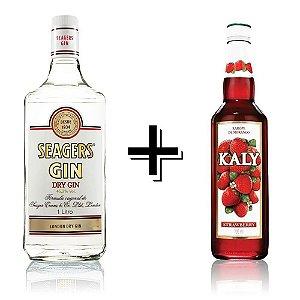 Combo Gin Seagers + Xarope Morango