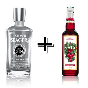 Combo Gin Silver + Xarope Cranberry
